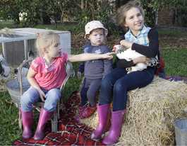 Feathery friends to steal the show at Farm Fantastic Expo