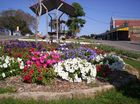Entries now open for the Betascapes 2015 Spring Garden Spectacular, with a $2000 Grand Champion prize