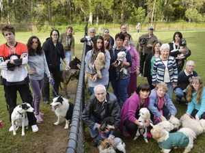 CONCERNED: A number of Forest Lake dog owners are upset that the dog park is moving from College Ave to Brighton Pde.