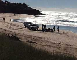 Man attacked by shark attack at Lighthouse Beach Ballina