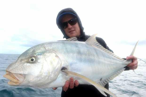 Plenty of fish to go around fraser coast chronicle for Go to plenty of fish com