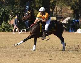 Australia unbeaten in Polocrosse World Cup