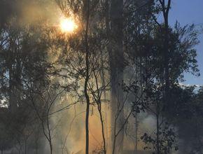 Large bushfire at North Gregory