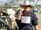 WITH a love of agriculture and cattle and a dream of owning her own stud, Emily Rabone has taken on a role as the 2015 Queensland Herefords Youth Ambassador.