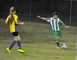 Nearly 1000 soccer juniors heading to Alstonville carnival