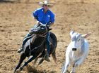 THERE was plenty of horsing around at the Paradise Lagoons Campdraft – no bull.