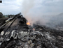 Russia vetoes UN resolution targeting MH17 culprits