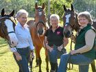 A group of passionate horse riders will travel more than 600km to participate in a masters games and they're encouraging other sporting teams to get involved.
