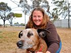 ROMA'S dog obedience instructor is calling on the Maranoa to follow steps taken by places like Toowoomba and Ipswich when it comes to registering pets.