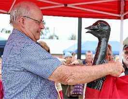 Beloved emu to be part of Wondai forever