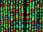 Breakthrough in editing' DNA to fight off deadly illnesses
