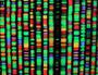 DNA revolution holds key to better rural health