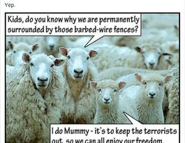 Bundy MP deletes meme mentioning terrorists