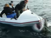 TERRIFYING footage of a mega shark attacking a tiny boat in New Zealand waters is making fresh waves online.