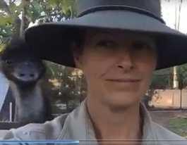 WATCH: Emu 'photobombs' Rockhampton zookeeper