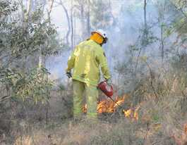 Prescribed burn at Wivenhoe Dam could produce smoke for days