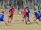 Kingaroy's junior Red Ants take on the Nanango Stags and the A-grade Red Ants play the Murgon Mustangs.
