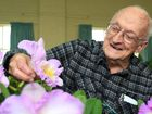 Lifetime member Ken Eldridge tending to an orchid at the Tweed District Orchid society show in Murwillumbah on Wednesday. Photo: Nolan Verheij-Full / Tweed Daily News