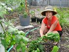 JEWEL Ienna is the driving force behind creating a community garden in Tannum Sands.