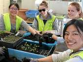 NINE young international visitors have spent this week helping local volunteers with environmental work.