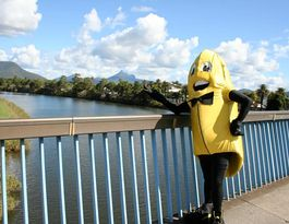 Tweed Valley Banana Festival celebrates 60 years