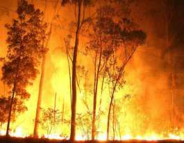 Bushfire danger period begins across the Coast