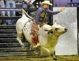 Kids have last word when it comes to PBR Tour Live Series