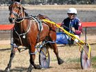 HARNESS RACING: Warwick trainer Dayl March has six horses nominated for the Darling Downs Harness Racing Club Father's Day Trots at Allman Park on Sunday.