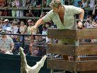 TODAY marks nine years since the Sunshine Coast - based Crocodile Hunter, Steve Irwin, passed away.