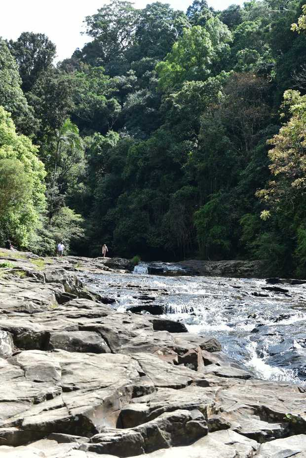 Good Morning Maleny. Gardeners Falls is a great place for ...