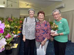 Carolyn Murray, Ellen Innocend and Joy Walker at the Laidley Spring Festival. Photo Inga Williams / The Queensland Times