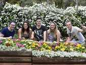 THE Toowoomba Carnival of Flowers extended down the Toowoomba Range to Spring Bluff Railway Station yesterday.