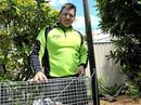 A GROWING number of feral cats are running rampant in areas of Coffs Harbour, with no organisation tasked with control measures such as baiting or trapping.