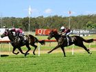 IPSWICH families are invited to celebrate the last day of the school holidays in style at one of Ipswich's most popular racing events.