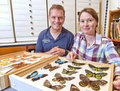 THE family of an avid butterfly collector is passing his legacy onto the people of Queensland.