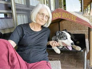 Long road to recovery for pet dog attacked by wild dogs