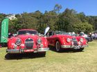 2015 Noosa Beach Car Show