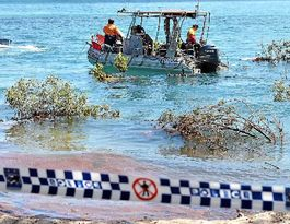 Inskip Point needs 'sink patrol' safety watch