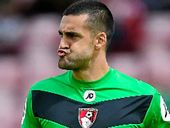 ADAM Federici says he is up to the challenge of meeting Australia's traditionally high goalkeeping standards when he lines up in the World Cup qualifier.