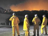 THE potential for a bad El Nino summer this year with higher risks of bushfires is growing, a climate expert has said.