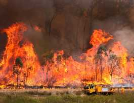 Rural Fire Service urges vigiliance as temperatures soar