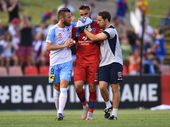 SHANE Smeltz has copped a fair amount of criticism after the challenge which left Newcastle Jets goalkeeper Mark Birighitti requiring surgery on his teeth.