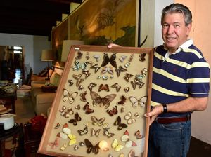 Auctioneer Shane Pfeffer with a butterfly collection from the Austins' estate, to be sold with the proceeds going towards the University of the Sunshine Coast.
