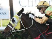 PULSAR took a well-deserved win when he stormed home to record a memorable victory at Clifford Park.