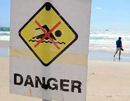 Ballina to get 'smart' drum lines to prevent shark attacks