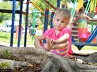 A TRIP to the park on a bright spring morning turned to one of blood and tears for little Hannah Raines yesterday.