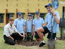 ONE of New South Wales' rarest trees is about to be given a helping hand, with three separate plantings of the tree in the Lennox Head area on November 10.