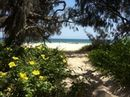 Your pictures of the landscapes of the Sunshine Coast.