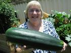 AN AMATEUR gardener in Toowoomba was shocked to discover she had grown a giant zucchini.