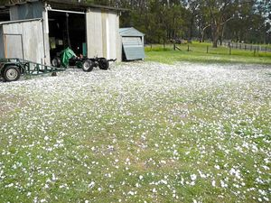 HAIL DAMAGE: Farmers affected by hail storms on the Coffs Coast in September can now apply for State Government assistance.